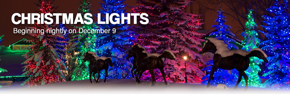 Dic 7-2017/Ene 7-2018 Christmas Lights at Spruce Meadows