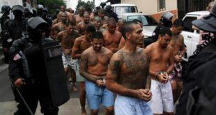 El Salvador Noticias-Detienen a 87 personas en El Salvador, la mayoría miembros de la Mara Salvatrucha- Calgary AB